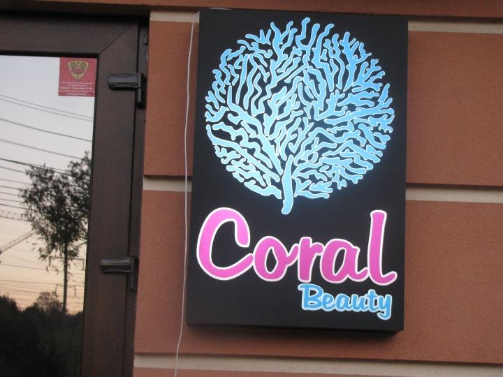 Printre corali